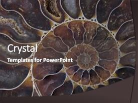 Top Biology Fossil PowerPoint Templates, Backgrounds, Slides