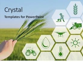5000 Agriculture Powerpoint Templates W Agriculture Themed Backgrounds