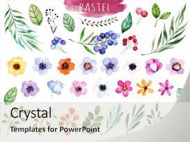 Slide deck consisting of colorful floral collection with multicolored background and a light gray colored foreground.
