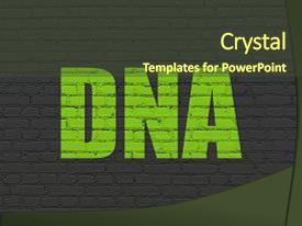 Beautiful slide deck featuring concept painted green text dna backdrop and a  colored foreground.