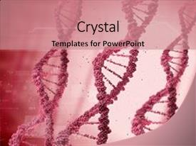 Presentation theme consisting of chromosome - concept with digital red dna background and a coral colored foreground