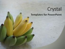 Presentation theme with cultivated banana is the thai favorit tropical fruit to eat background and a light gray colored foreground.