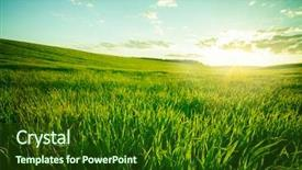 PPT layouts having environment - green meadow under blue sky background and a forest green colored foreground