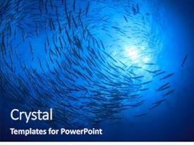 Fish Powerpoint Templates W Fish Themed Backgrounds