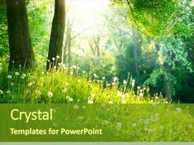 Audience pleasing slide deck consisting of environment - spring nature beautiful landscape park backdrop and a tawny brown colored foreground
