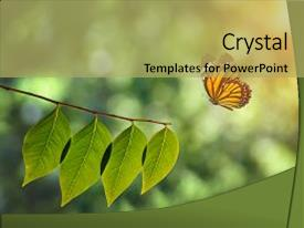 PPT theme featuring environment - fly butterfly and green leaf background and a yellow colored foreground.