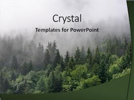 Forest Powerpoint Templates W Forest Themed Backgrounds
