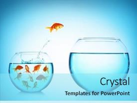 Slide deck with fish - goldfish jumping from glass aquarium background and a arctic colored foreground