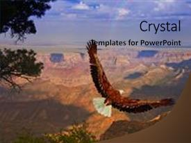 PPT theme enhanced with eagle - flight over grand canyon usa background and a light blue colored foreground.