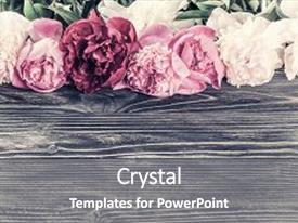 Presentation enhanced with floral background with peony flower background and a gray colored foreground.