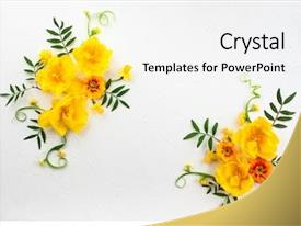 Cool new presentation with flowers composition oh white background backdrop and a white colored foreground