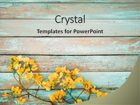Amazing slide deck having flowers on vintage wooden background backdrop and a light gray colored foreground.