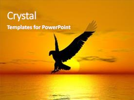 Cool new presentation theme with flying eagle above the ocean backdrop and a gray colored foreground.