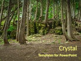 Beautiful PPT layouts featuring rocks - forest in northern michigan ancient backdrop and a tawny brown colored foreground.