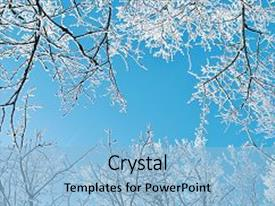 PPT theme with frosty tree tops winter background background and a light blue colored foreground.