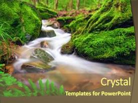 Beautiful slides featuring gently flowing through moss cover backdrop and a  colored foreground.