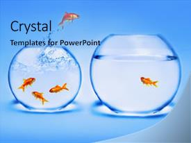 Cool new presentation design with gold fish - photo of goldfish jumping backdrop and a light blue colored foreground.