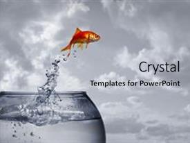 PPT layouts consisting of goldfish jumping out of the background and a light gray colored foreground.