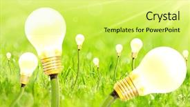 Presentation design enhanced with growing bulbs on summer green background and a yellow colored foreground