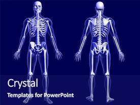 Slides consisting of human body - 3d render of an x-ray background and a navy blue colored foreground.