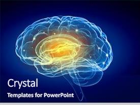 Colorful presentation enhanced with human intelligence with human brain backdrop and a navy blue colored foreground