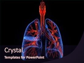 1000 respiratory system powerpoint templates w respiratory system audience pleasing ppt layouts consisting of illustration human body respiratory system backdrop and a wine colored toneelgroepblik Image collections