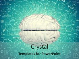 Presentation having model of human brain background and a seafoam green colored foreground.