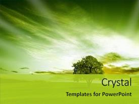Download 97+ Background Power Point Nature Green HD Terbaru
