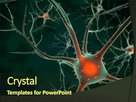 500 neuroscience powerpoint templates w neuroscience themed ppt theme featuring brain 3d rendering background and a tawny brown toneelgroepblik Choice Image