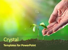 5000 ecology powerpoint templates w ecology themed backgrounds beautiful ppt layouts featuring plant new life growth money backdrop and a toneelgroepblik Gallery