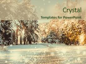 Slide deck with new year christmas winter background background and a soft green colored foreground.