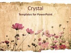 Cool new PPT theme with old-fashioned artistic flower backdrop and a  colored foreground.