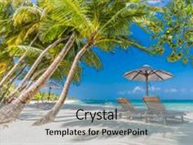 Theme with perfect beach view summer holiday and vacation design inspirational tropical beach palm trees and white sand tranquil scenery relaxing beach tropical landscape design moody landscape background and a  colored foreground.