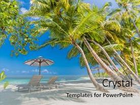 PPT layouts consisting of perfect beach view summer holiday and vacation design inspirational tropical beach palm trees and white sand tranquil scenery relaxing beach tropical landscape design moody landscape background and a  colored foreground.