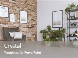 Presentation with wall above plants in simple background and a gray colored foreground.