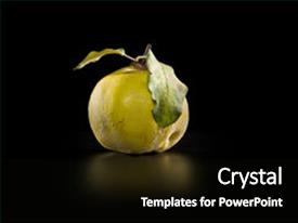 Cool new presentation with quince on dark background backdrop and a black colored foreground