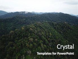 top rainforest powerpoint templates backgrounds slides and ppt themes