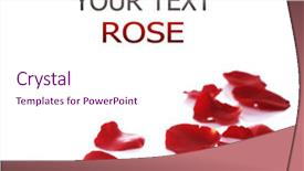 PPT theme with rose petals border background and a pink colored foreground.