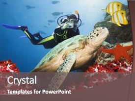 Colorful Presentation Theme Enhanced With Scuba Diving