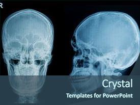 5000+ Anatomy Skull PowerPoint Templates w/ Anatomy Skull-Themed ...