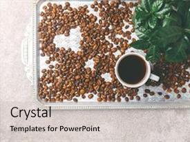 Beautiful slides featuring sprout of coffee plant tree espresso cup in a pot with roasted coffee beans scattered around gray stone background top view backdrop and a light gray colored foreground
