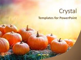 Audience pleasing presentation consisting of sunset - thanksgiving and fall background backdrop and a cream colored foreground.