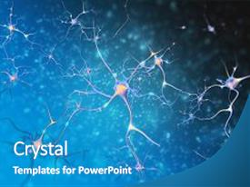 PPT theme having the nervous system cell background and a  colored foreground.