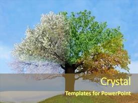 PPT theme with time - four season tree background and a tawny brown colored foreground