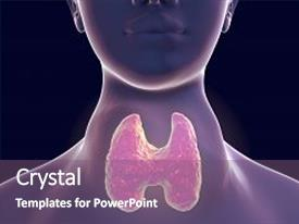 100 diseases endocrine system powerpoint templates w diseases cool new presentation theme with goiter flajani basedow graves disease backdrop and a violet toneelgroepblik Gallery