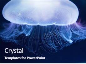 Oceanography Powerpoint Templates W Oceanography Themed Backgrounds