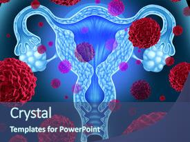 3000 reproductive health powerpoint templates w reproductive slide deck featuring anatomy female ovaries uterus or uterine cancer medical background and a ocean toneelgroepblik Image collections
