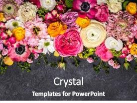 Colorful presentation theme enhanced with various flowers on black background backdrop and a dark gray colored foreground