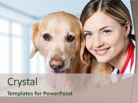Presentation theme having veterinarian animal vet dog clinic background and a soft green colored foreground.