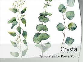 Amazing slide deck having graphic flower - white background for design backdrop and a light gray colored foreground.